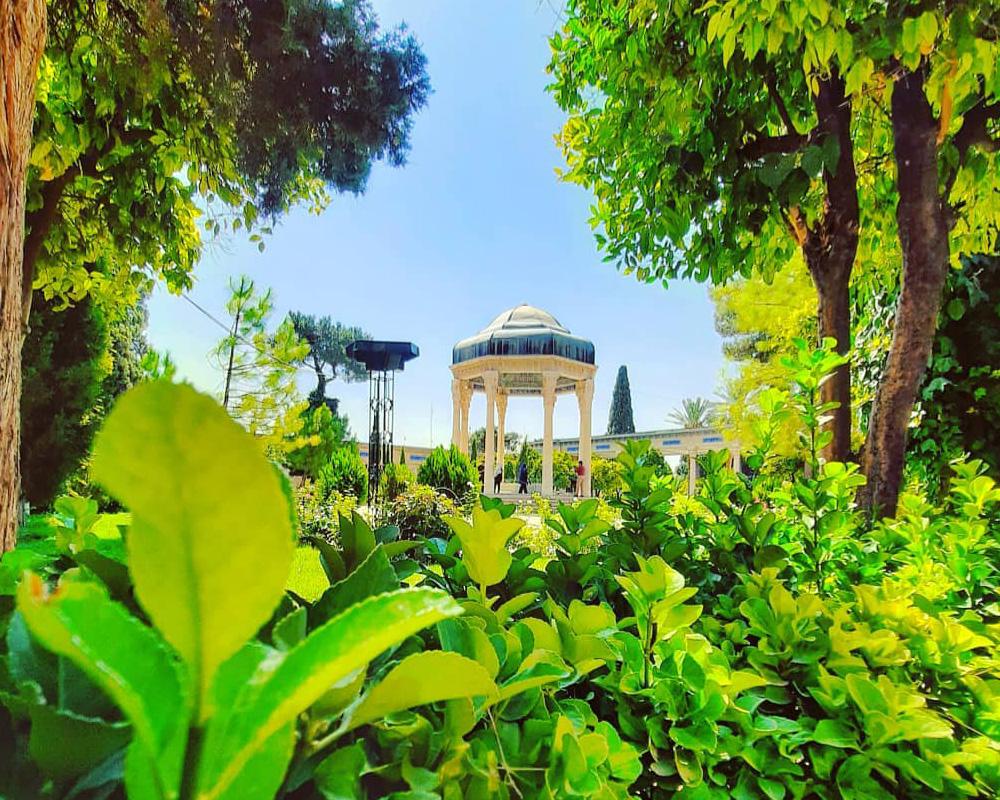 خرید بلیط هواپیما شیراز با بهترین قیمت