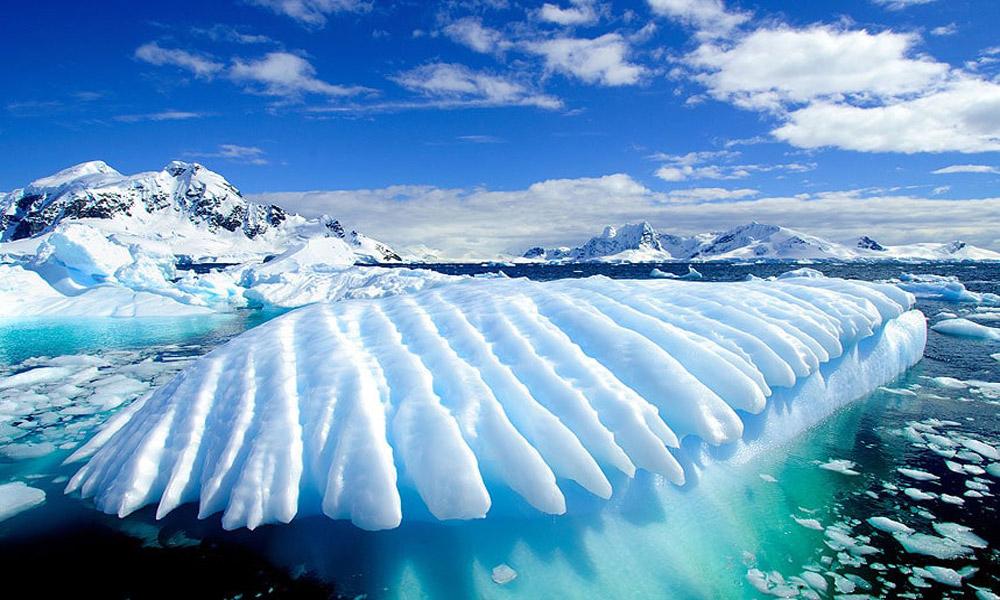 اگر به قطب جنوب سفر می کنید، این قوانین را رعایت کنید