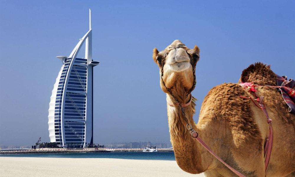 جاذبه های گردشگری تور دبی