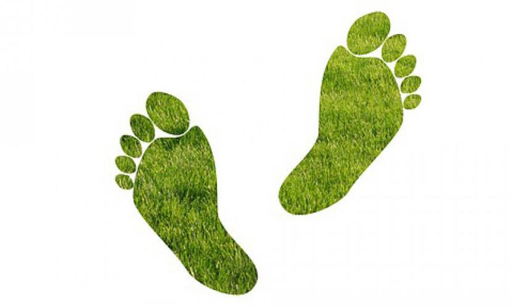 ایرلاینی دوستدار محیط زیست؛ کی ال ام پیشگام می شود
