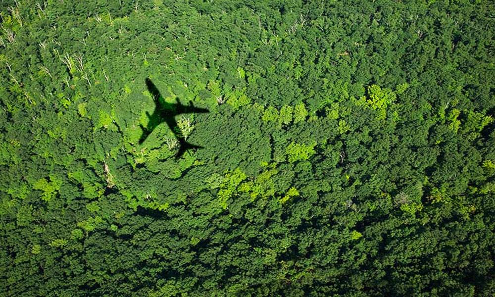 اکوتوریسم؛ سفر سبز